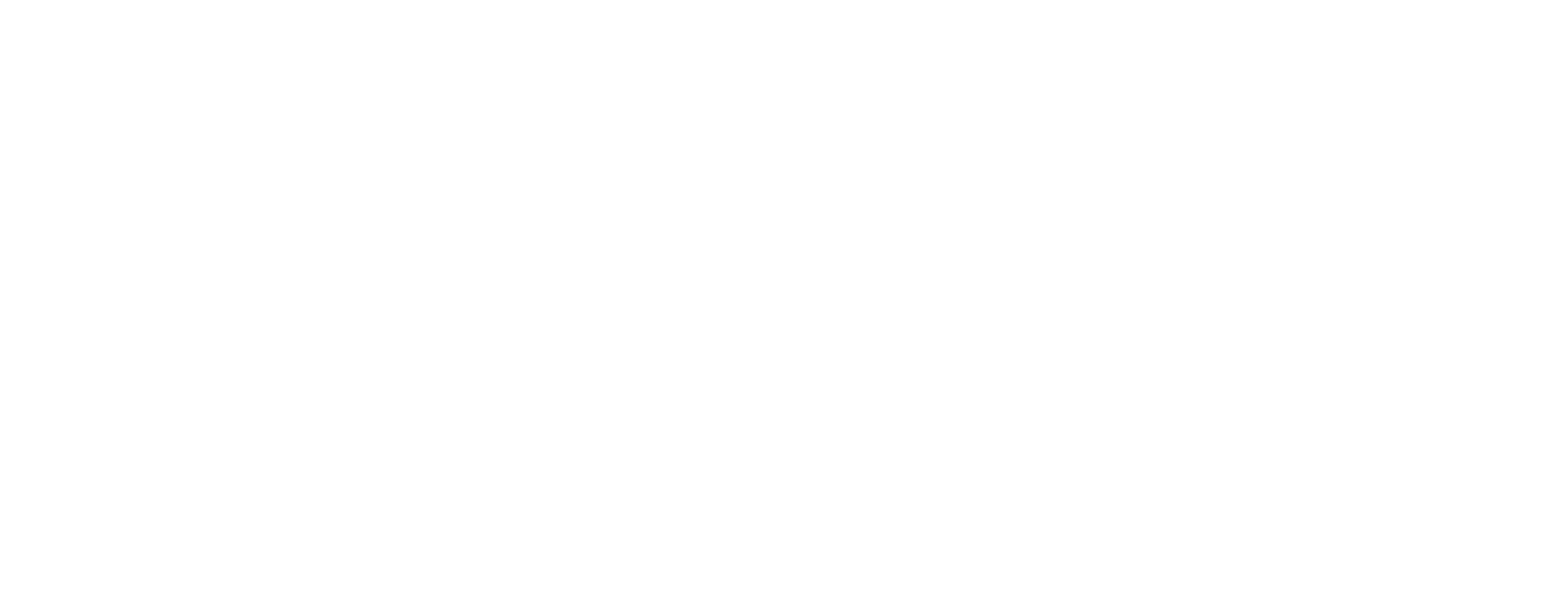 appii logo